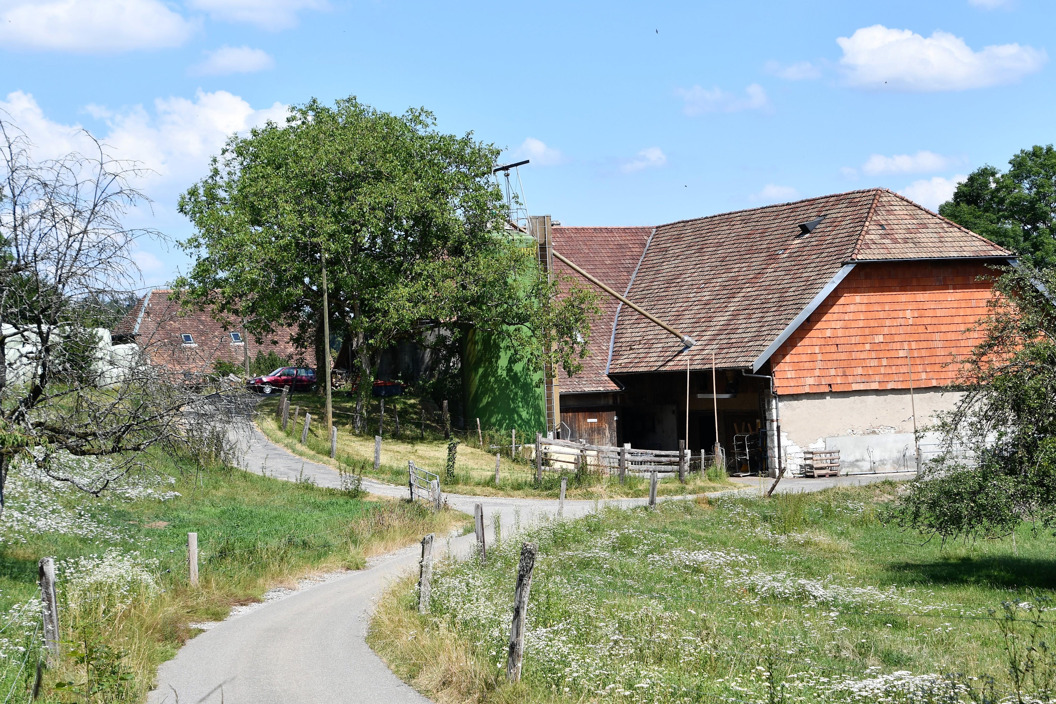 farm-feldbrunnen-14.07.2019