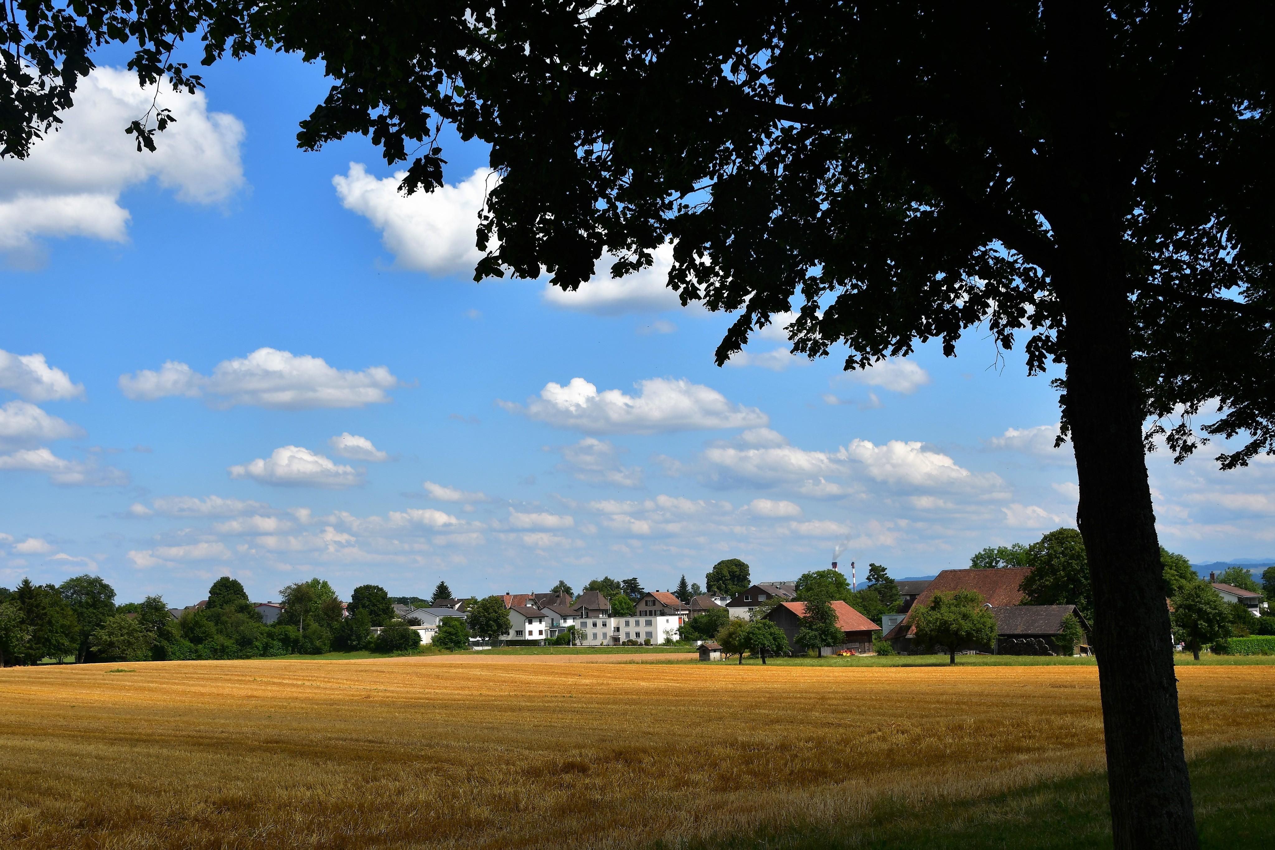 landscapes-feldbrunnen-14.07-1