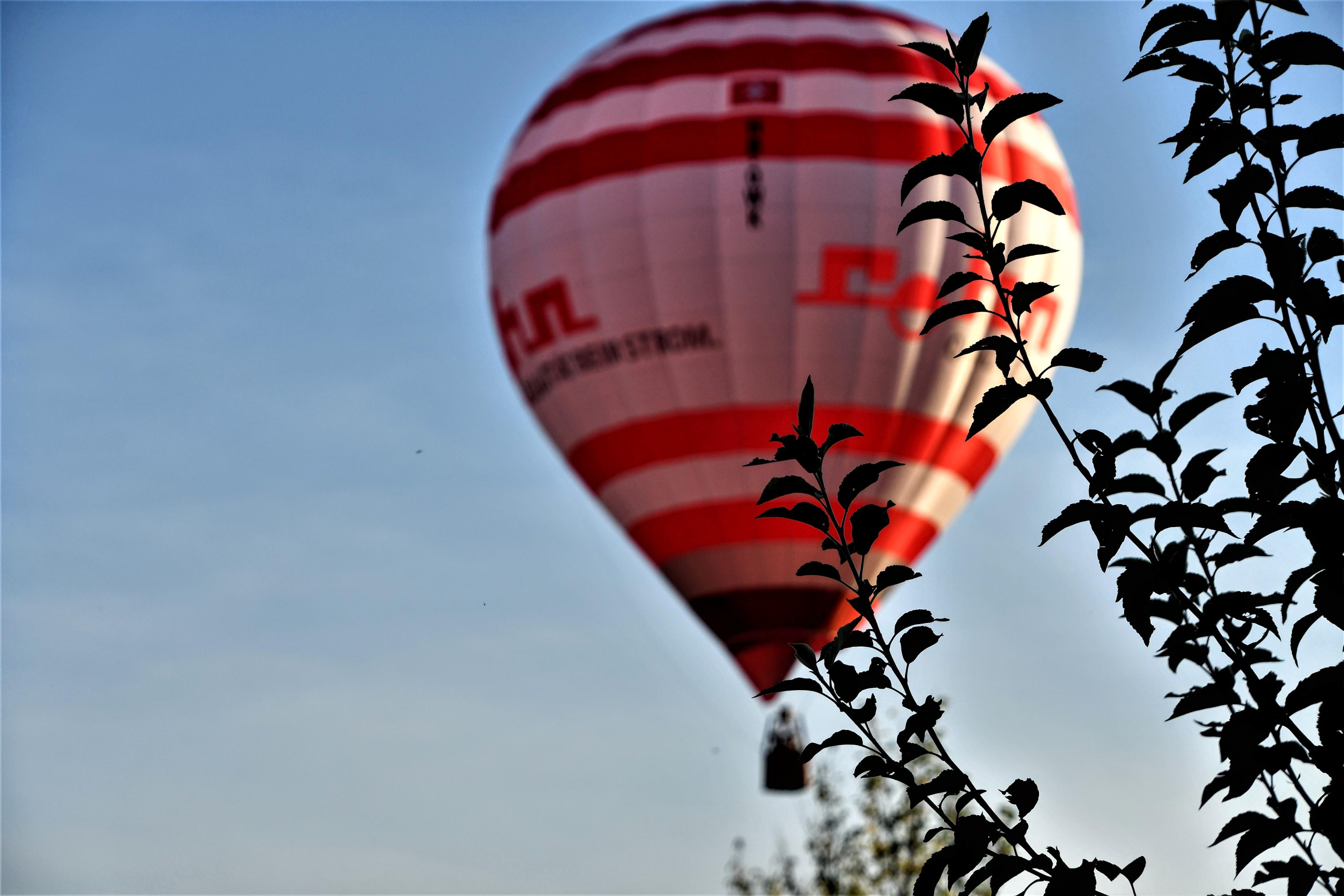 hot-air-balloon-over-the-estate-21.09-4