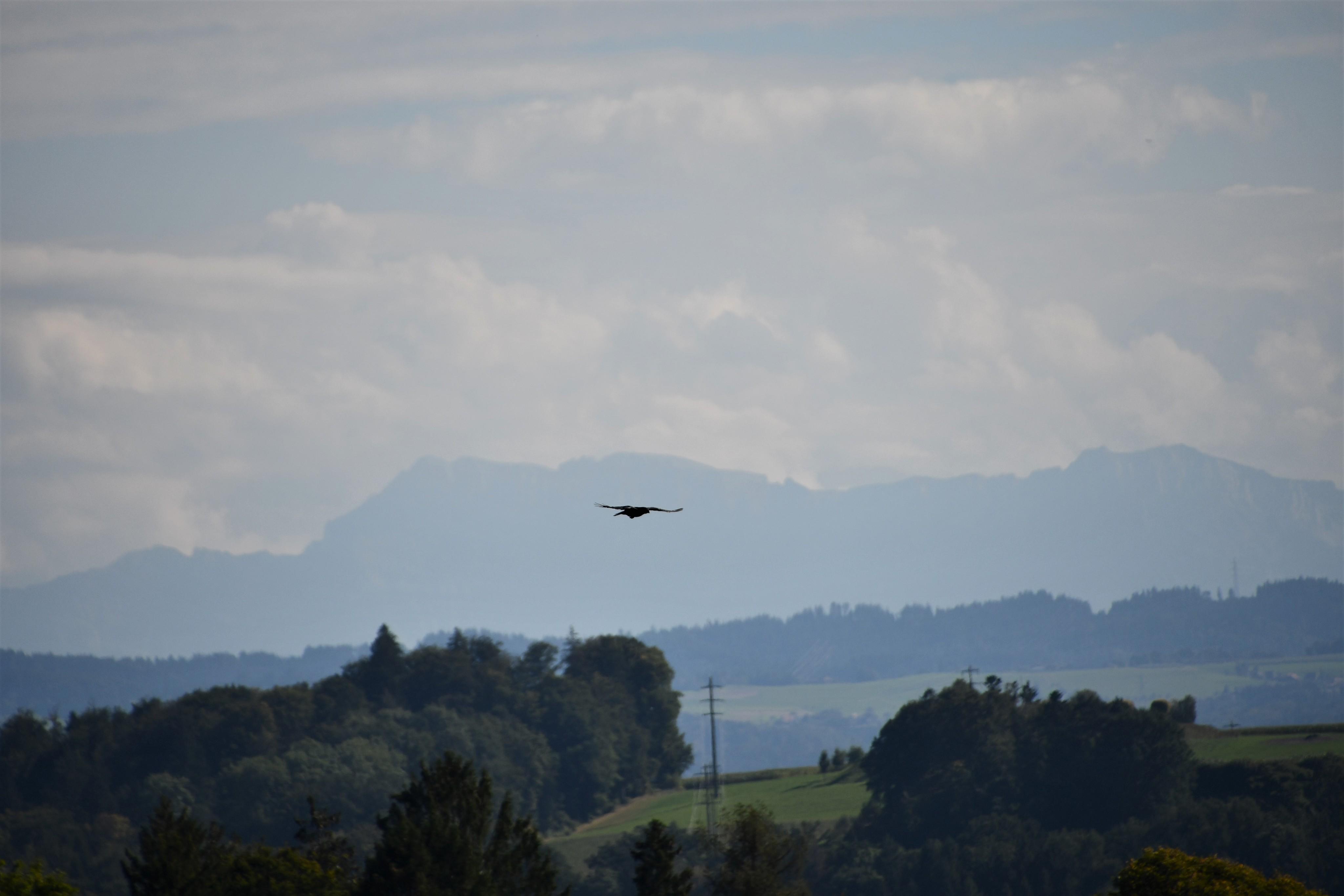 looking-south-from-feldbrunnen-17.09-1