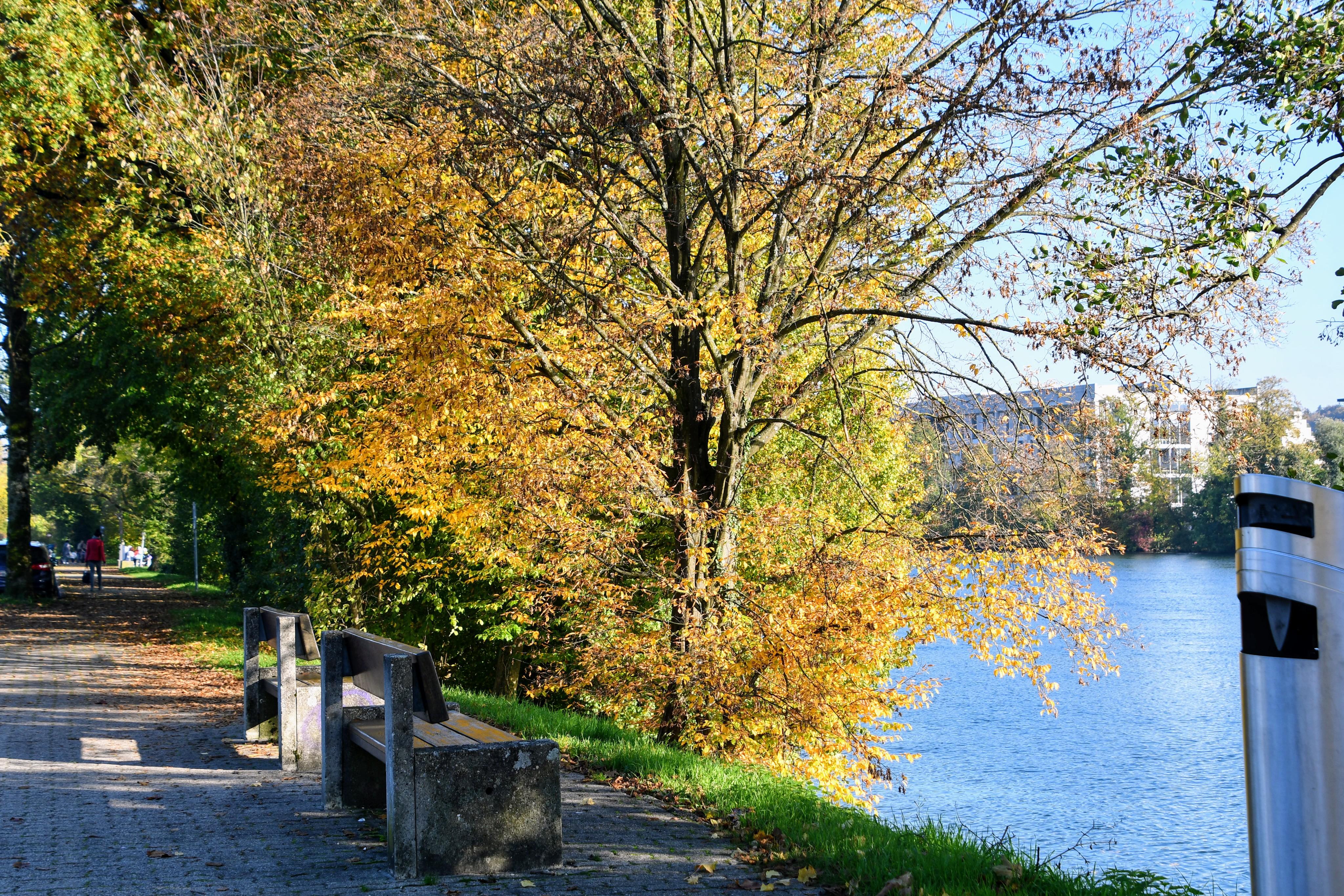 autumn-26.10-31