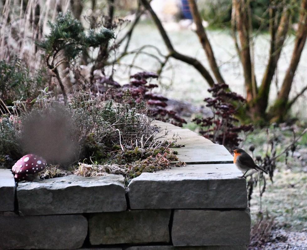 10.01.2022-baselstr-cemetery-waldegg-1