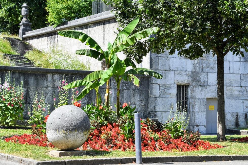 flowerbed-27.06.2020-2