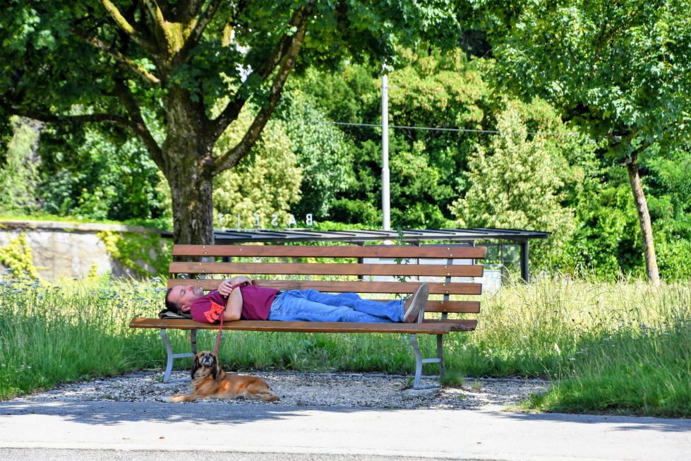 sleeping-on-the-bench-27.06.2020