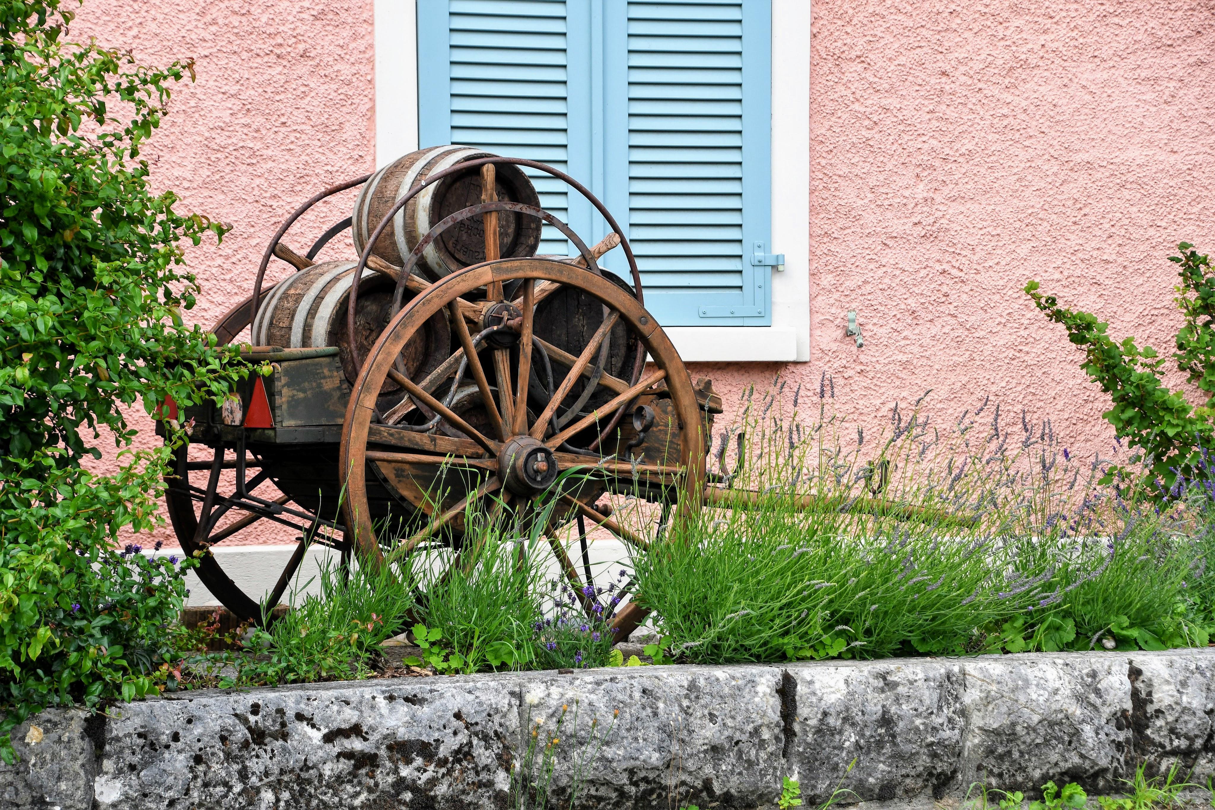 wheelbarrow-and-barrels-18.06.2020
