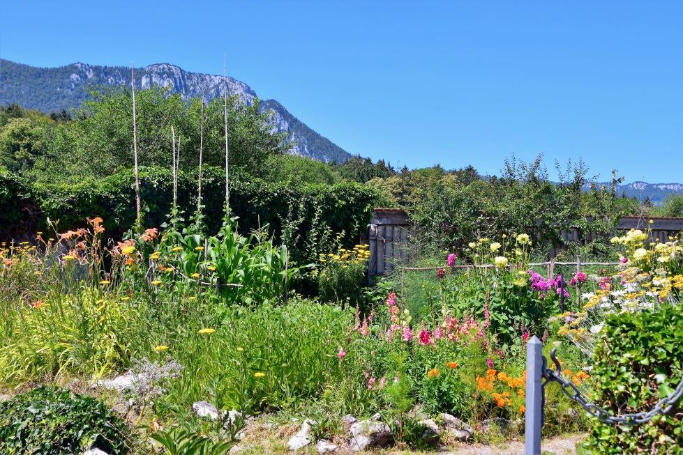 castle-waldegg-garden-07.07-2
