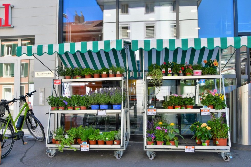flowers-migros-solothurn-30.06.2020