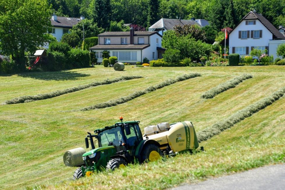 harvest-07.07-8