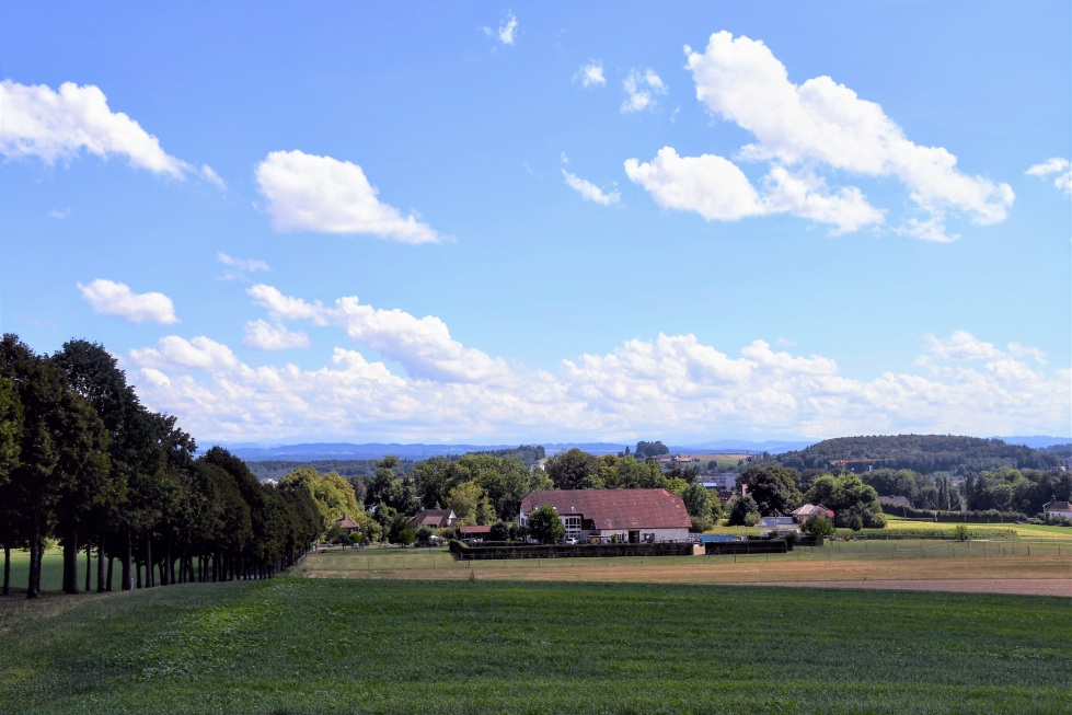 landscapes-around-feldbrunnen-15.08-1