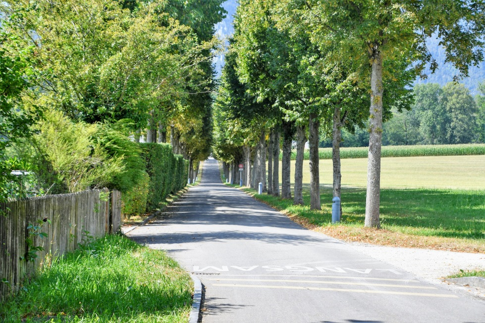 landscapes-cstle-waldegg-01.08-11